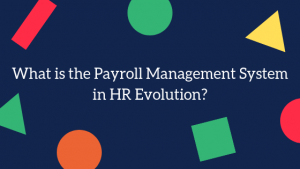 What is the Payroll Management System in HR Evolution?