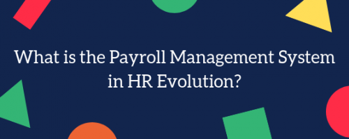 What is Payroll Management in HR Evolution?